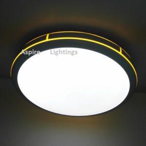 Citrus Ceiling LED Light Singapore - Aspire Lights
